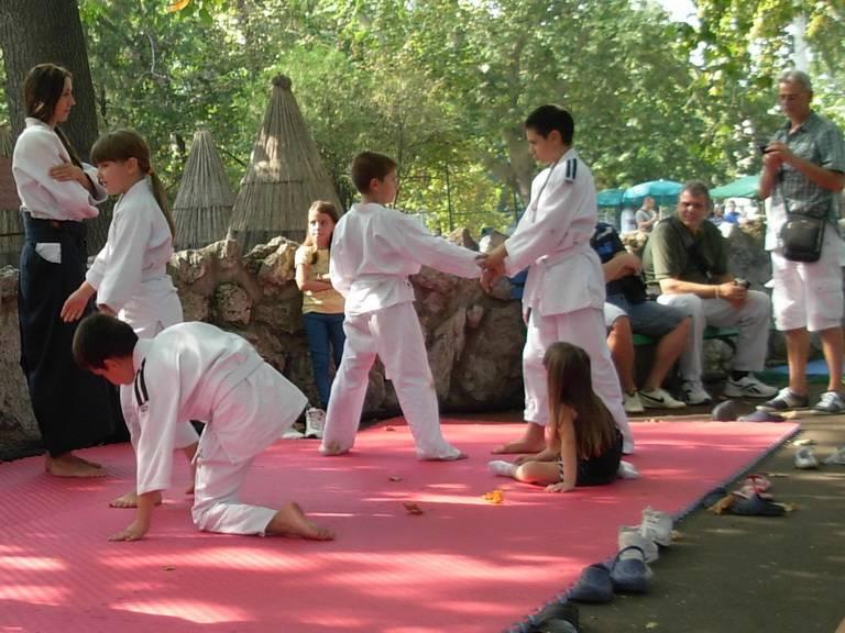 Skraceni aikido trening