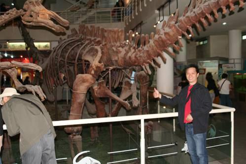 Sauropod Mamanchisaurus.