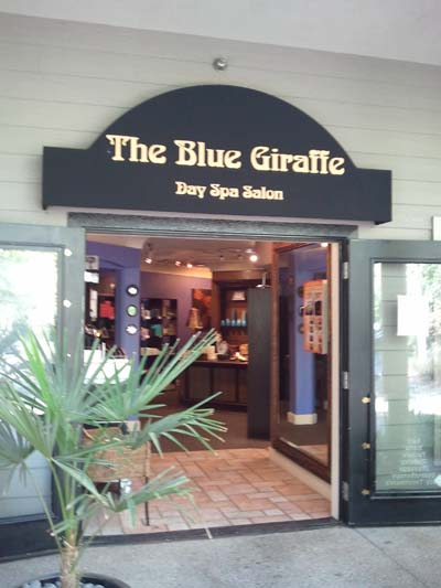 Blue Giraffe Day Spa Outside