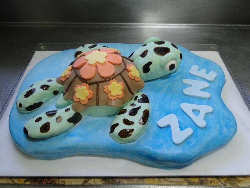 "The ""Turtle"" Cake"