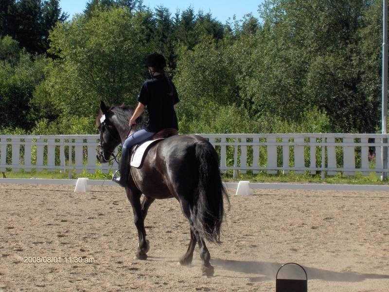 Katarina og Rovijan D-stevne dressur 2008.