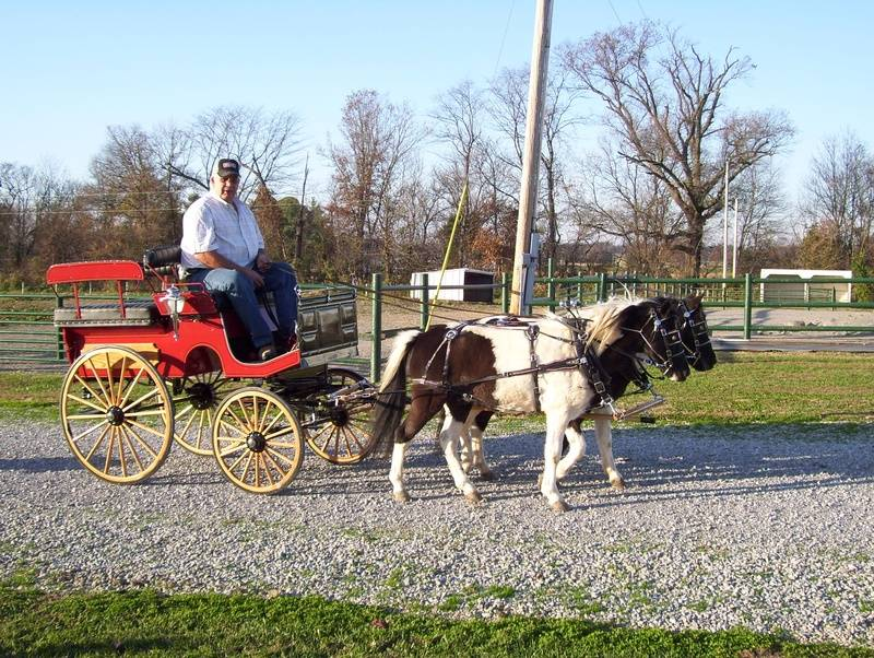 Wagonette/Hitch Wagon
