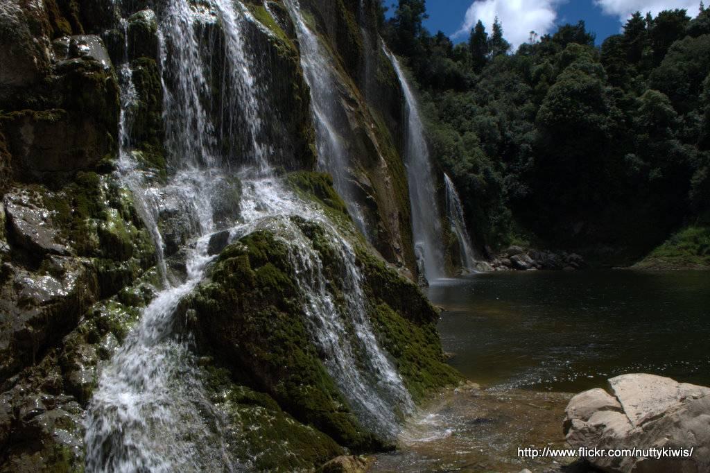 Waihi falls3