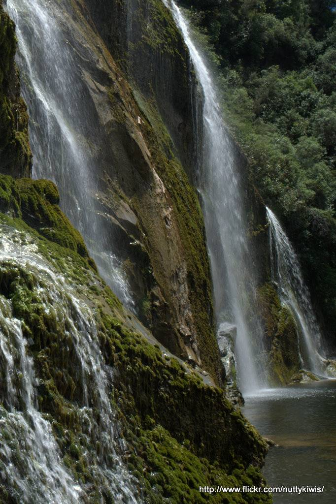Waihi falls4