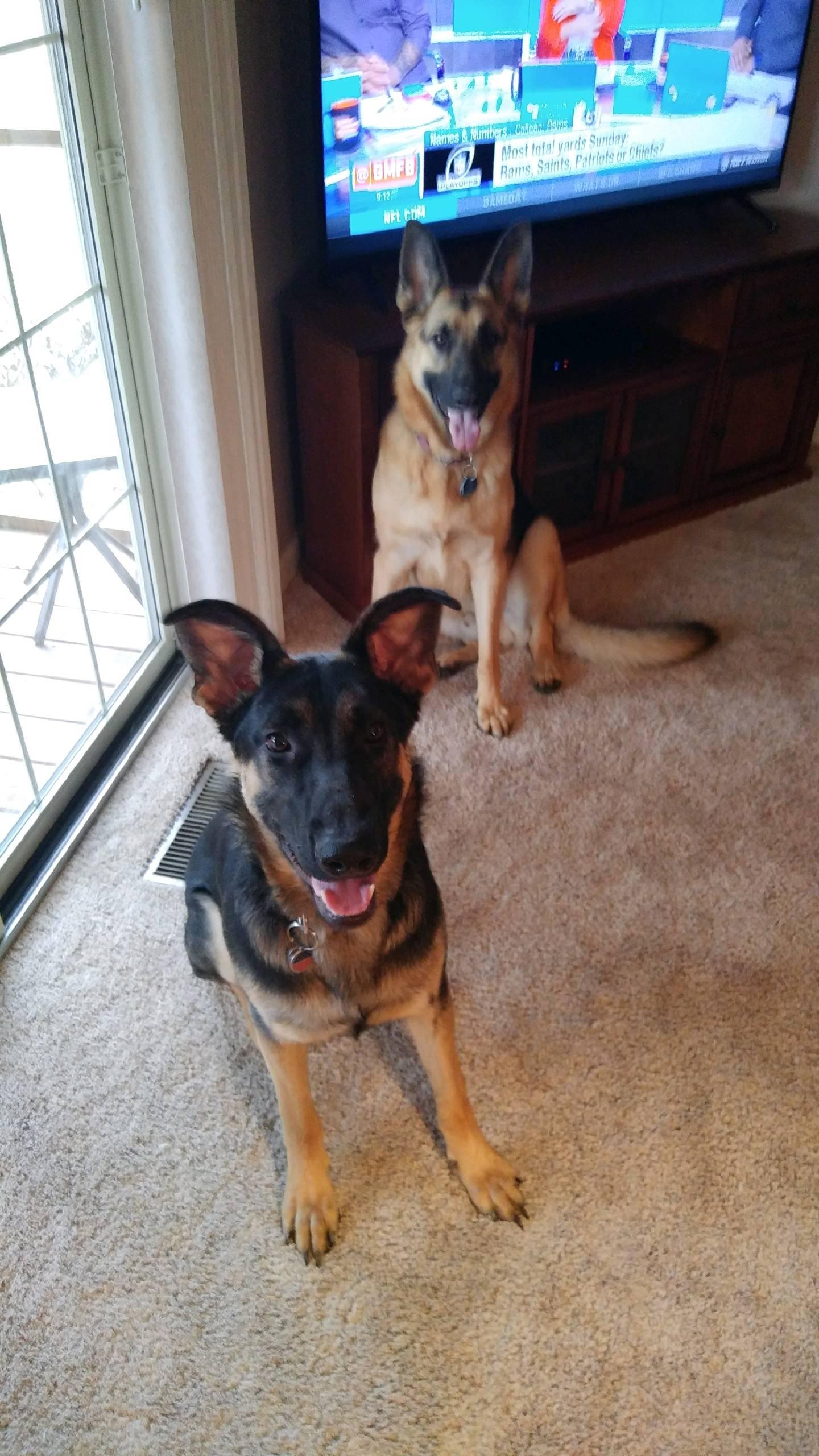 Major and Lenny