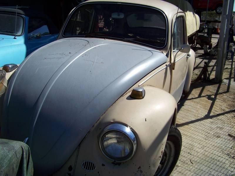 67 Beetle