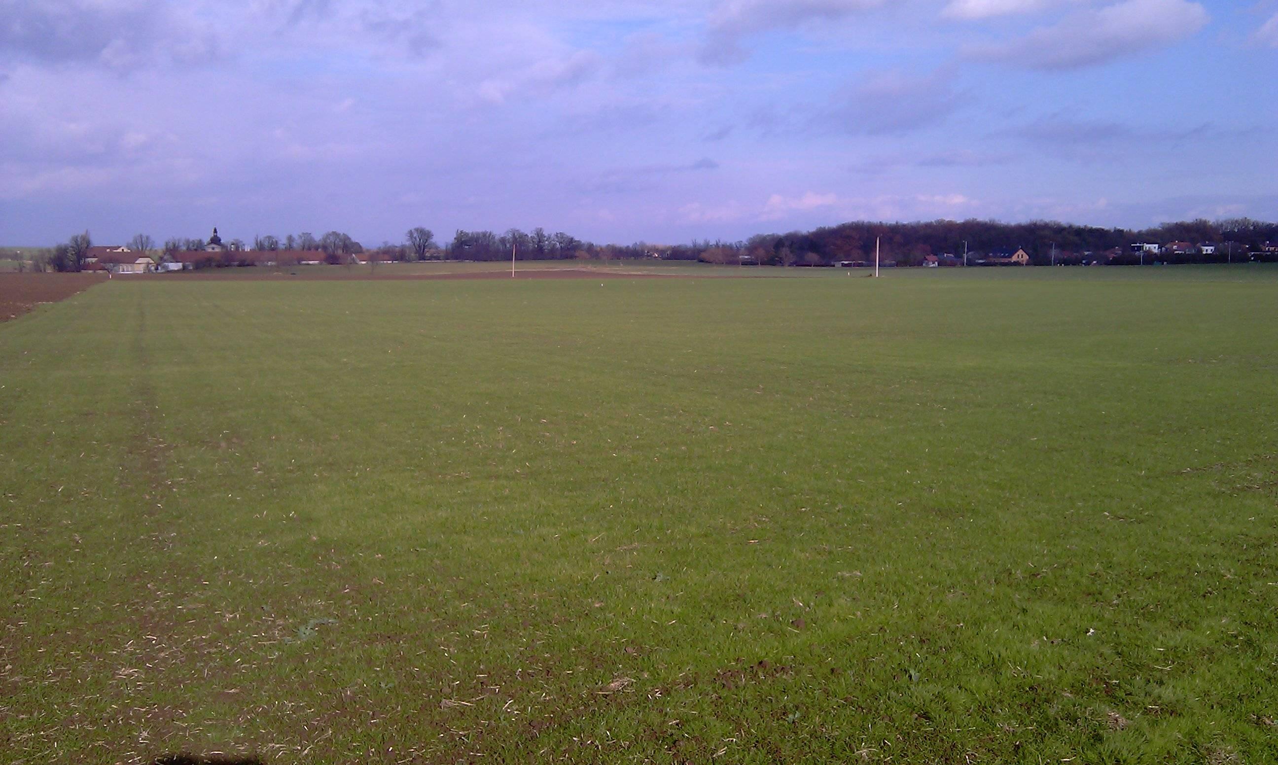 Zamek Field