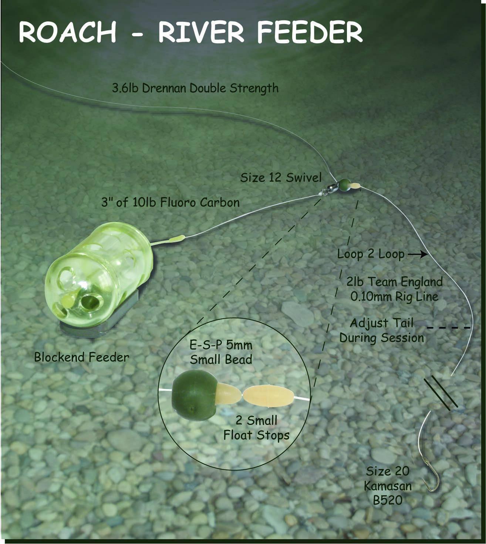 Roach Feeder Rig