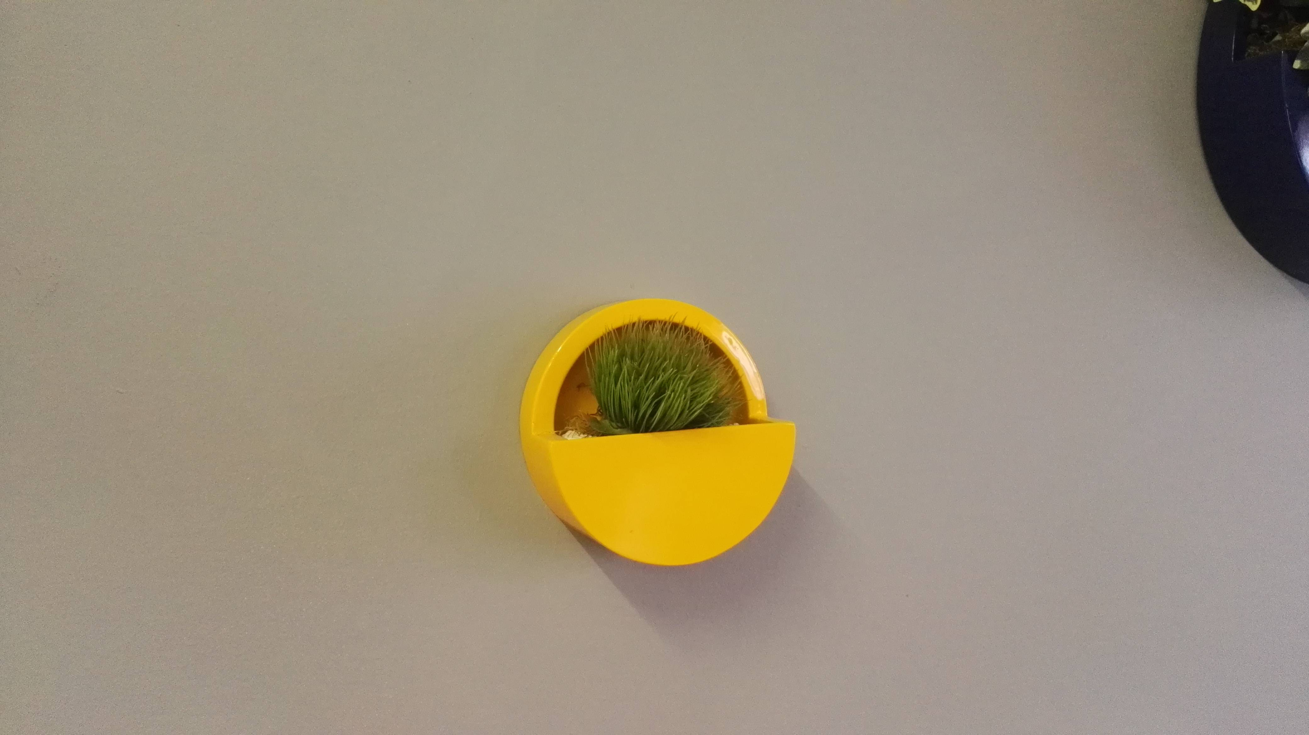 Small round cut out wall mounted