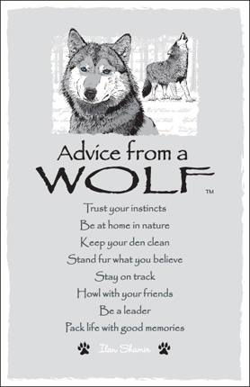 Advice from a Wolf