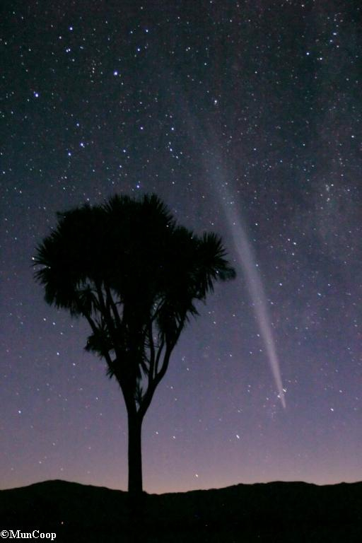The Great Xmas Comet of 2011
