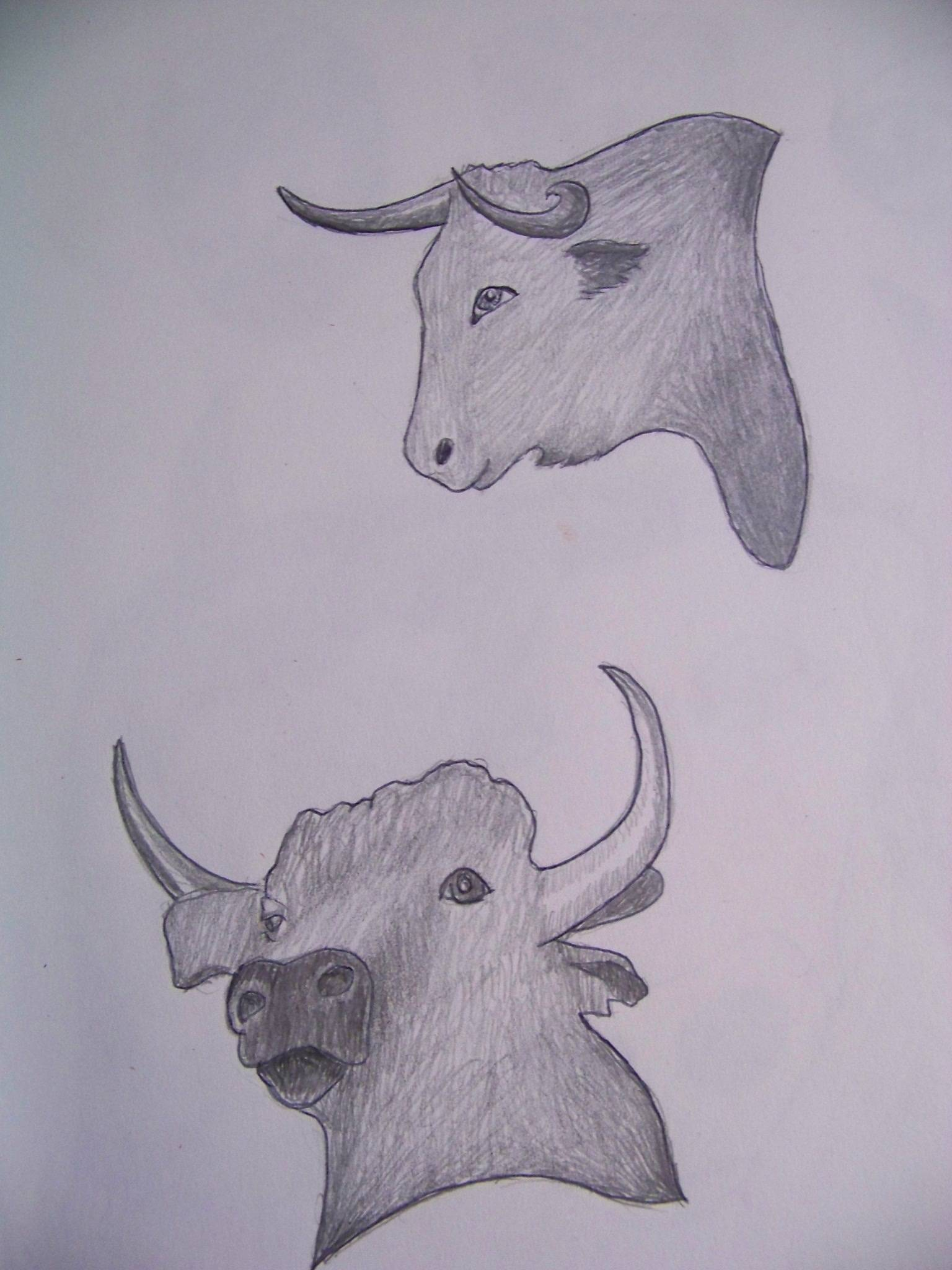 Bull's eye thumbnail sketches