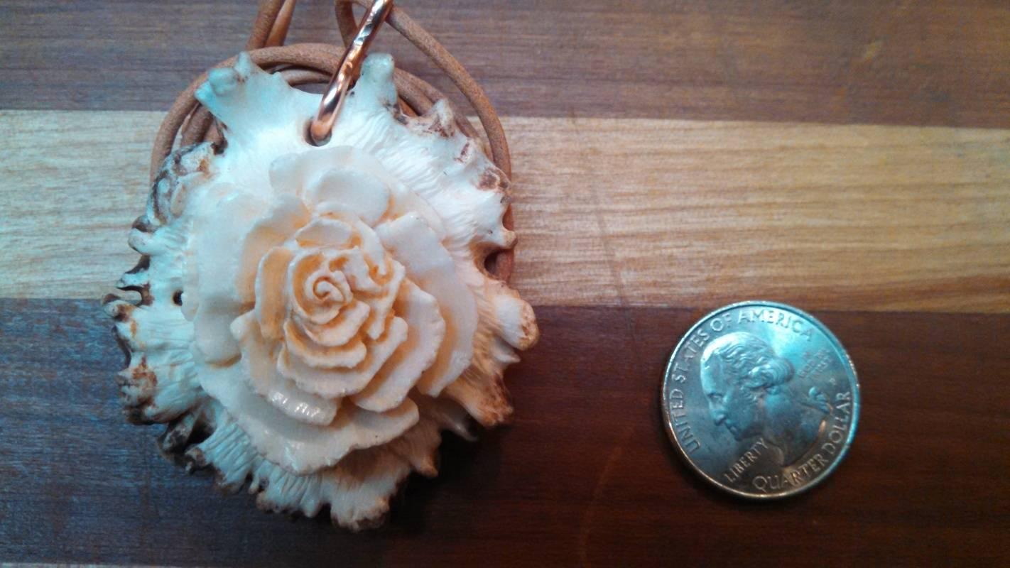 Rose on a rose-medium