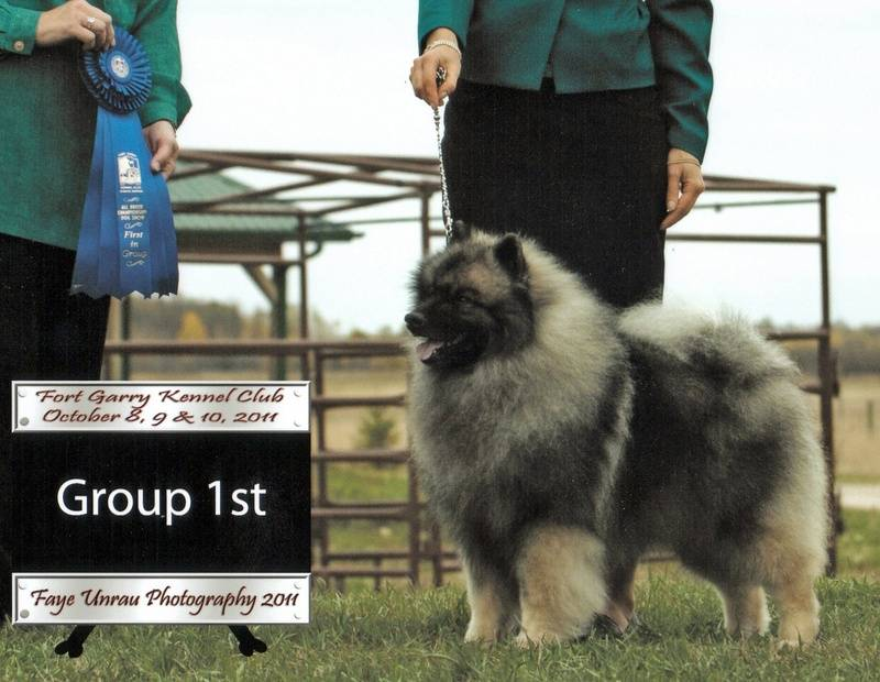 Flash, taking First in the Non-Sporting Group at the Fort Garry Kennel Club show.