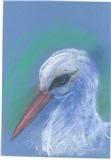 stork  by lindann (sky)
