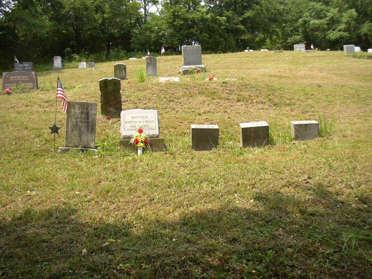 Graves of Pvt. James Strong, Wife Martha and 3 sons