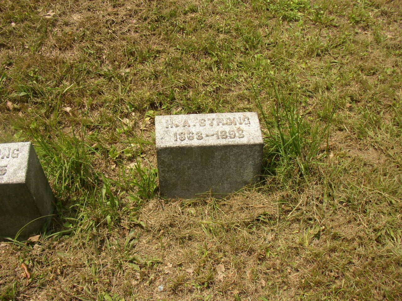 3rd Son's grave