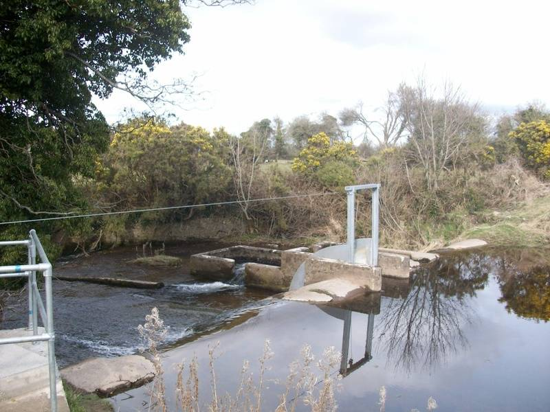 Silver River Weir at Cadamstown