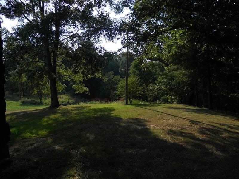 view from cabin-back door #3