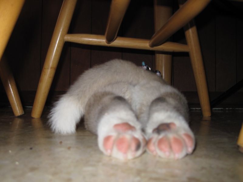 Pink toes!