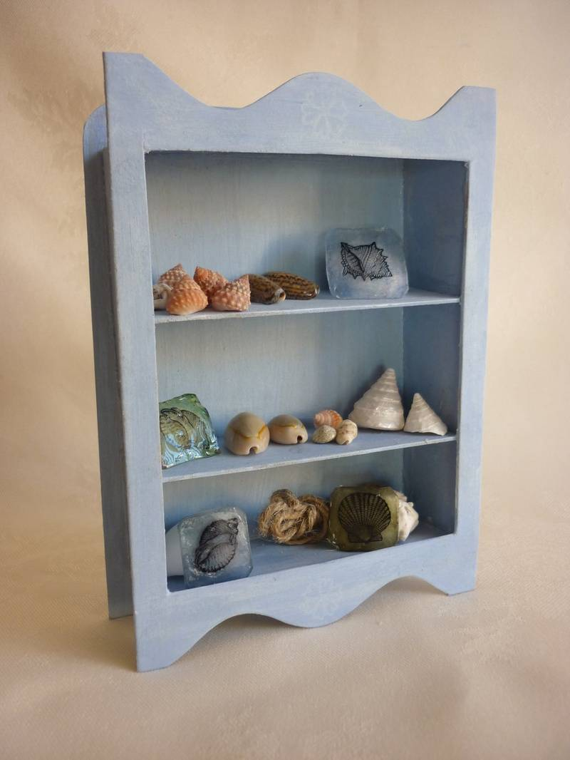 Shell Seeker Shelf