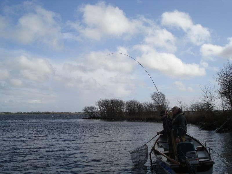Buzzer fishing on corrib