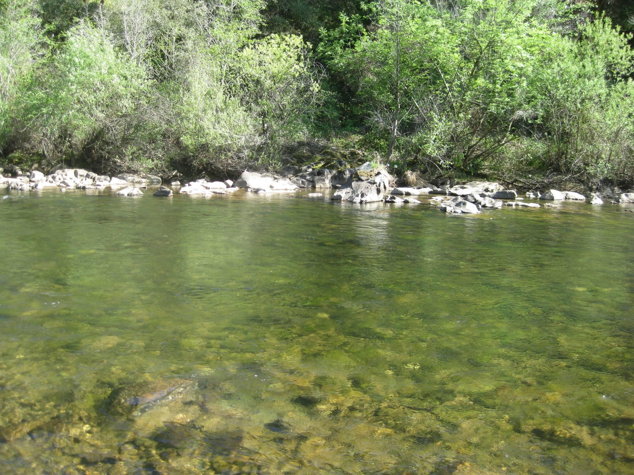 Across Stream
