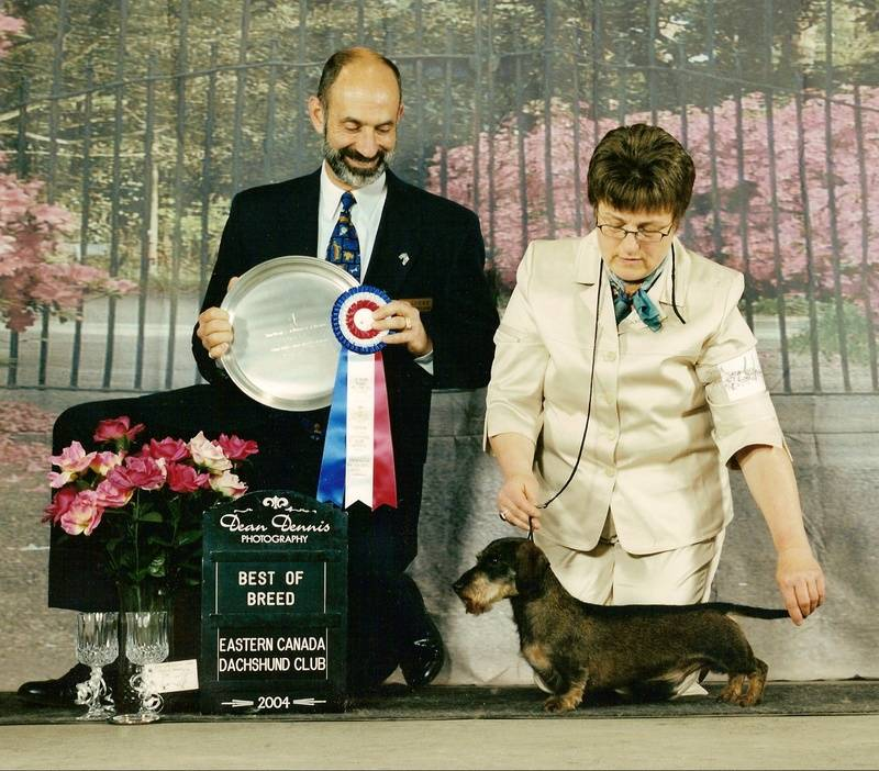 Winston Best in Specialty Show