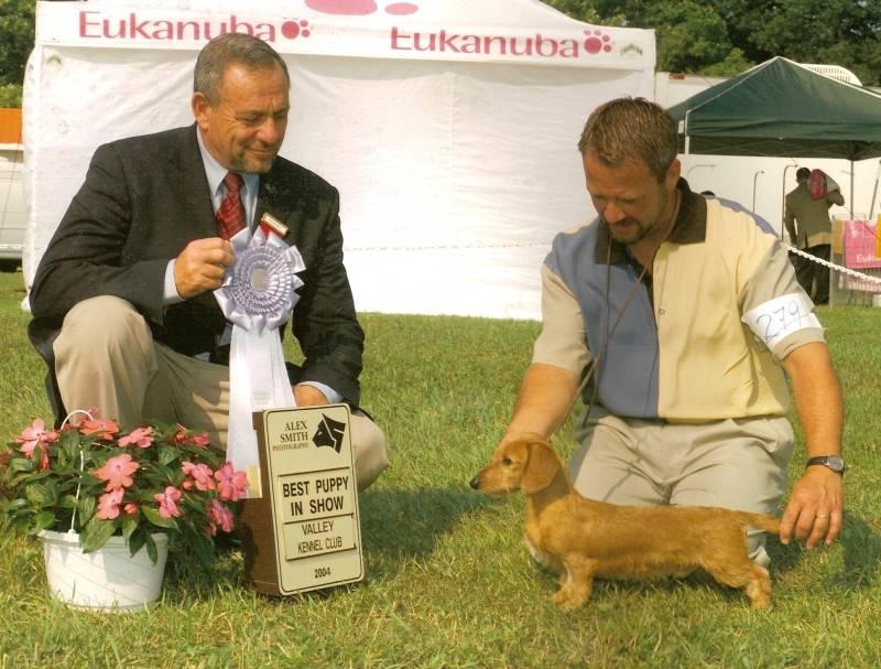 PJ Best Puppy in Show