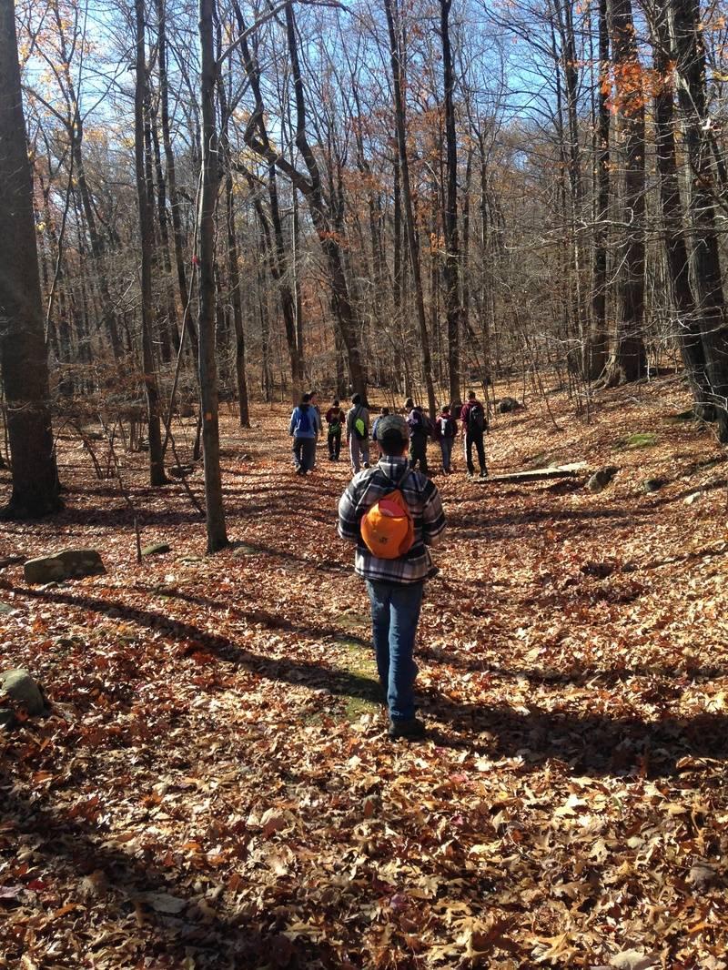 Hike to Tamarack