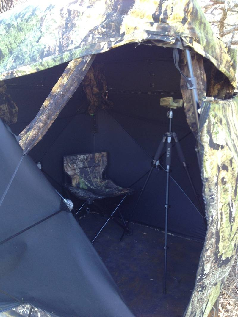 Set up in the blind.