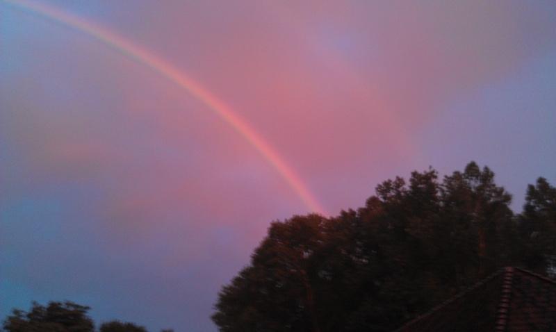 De regenboog