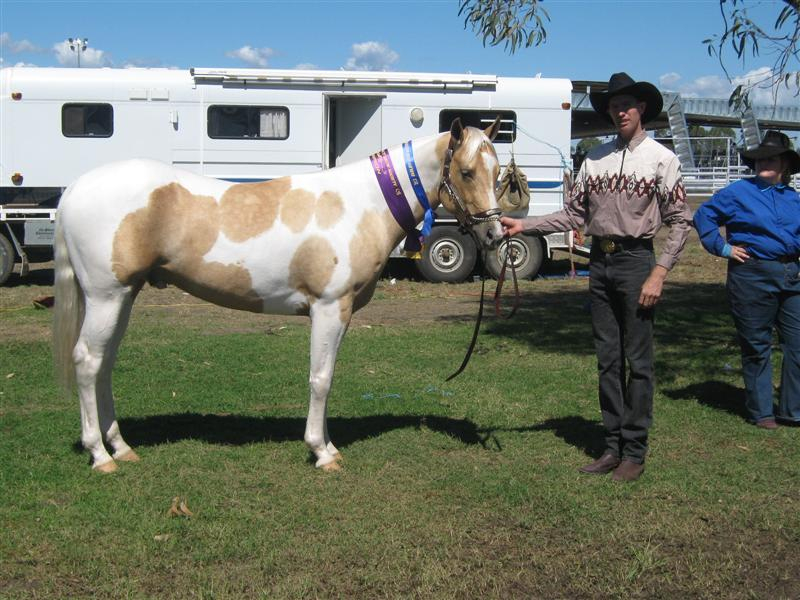 Dalby Show 2009