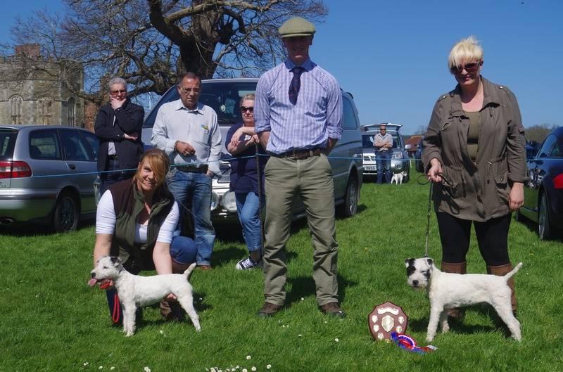 JR Puppy Champion & Reserve
