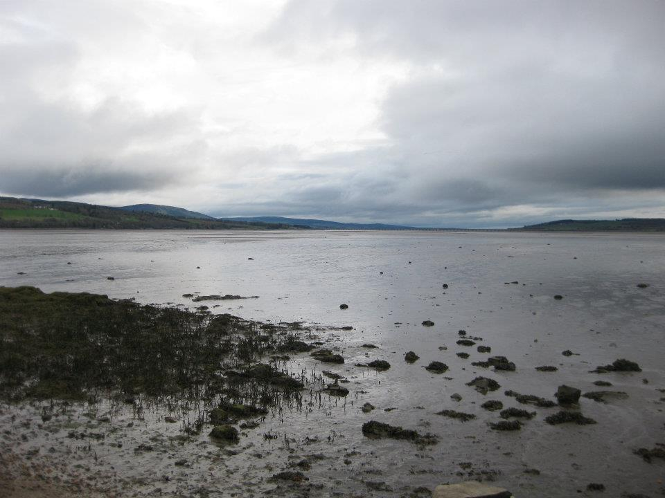 Looking out on the Cromarty Firth