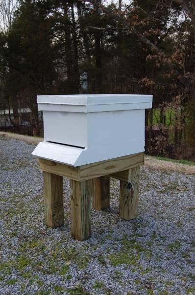 Hive & Hive Stand