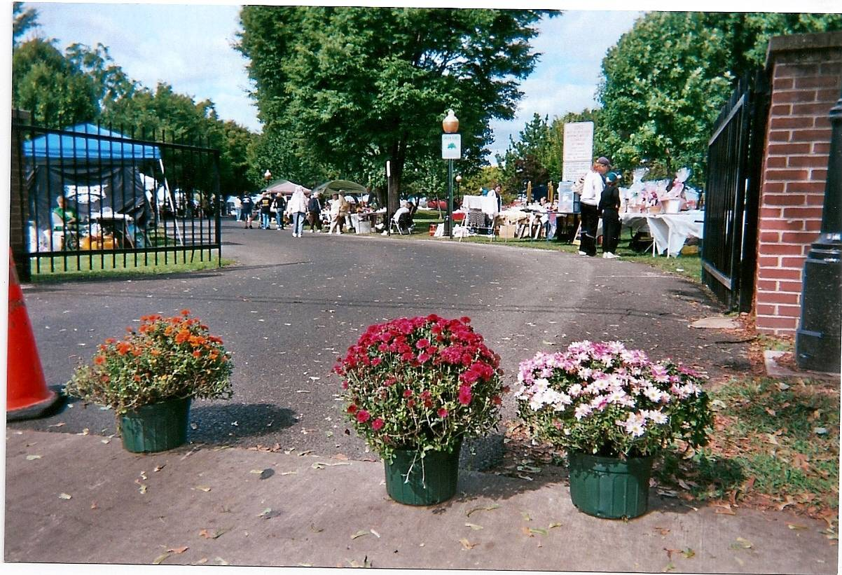 Entrance to Festival