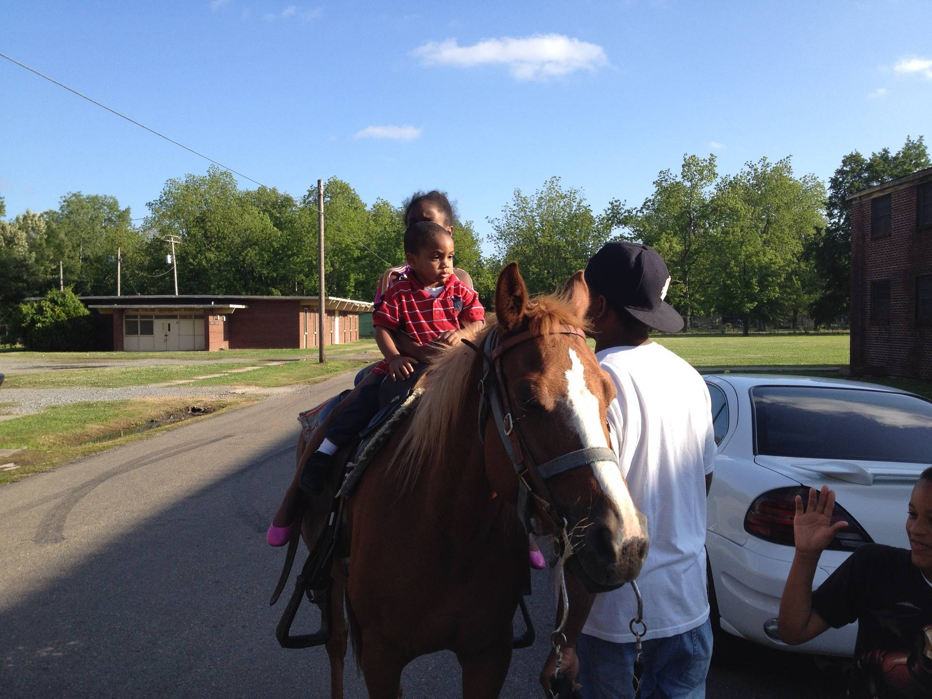 A day on the horses