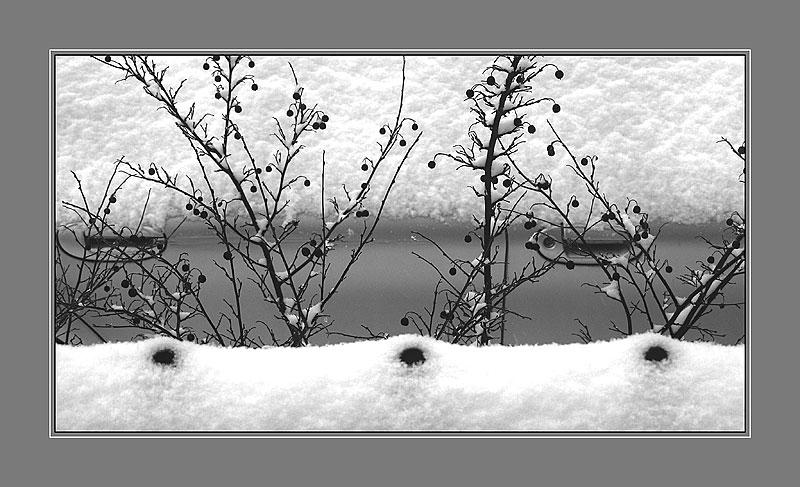 Winter scketch-3