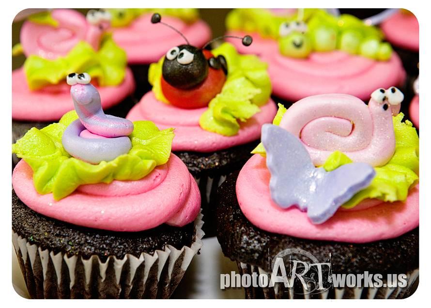 Girlie Bug Cupcakes
