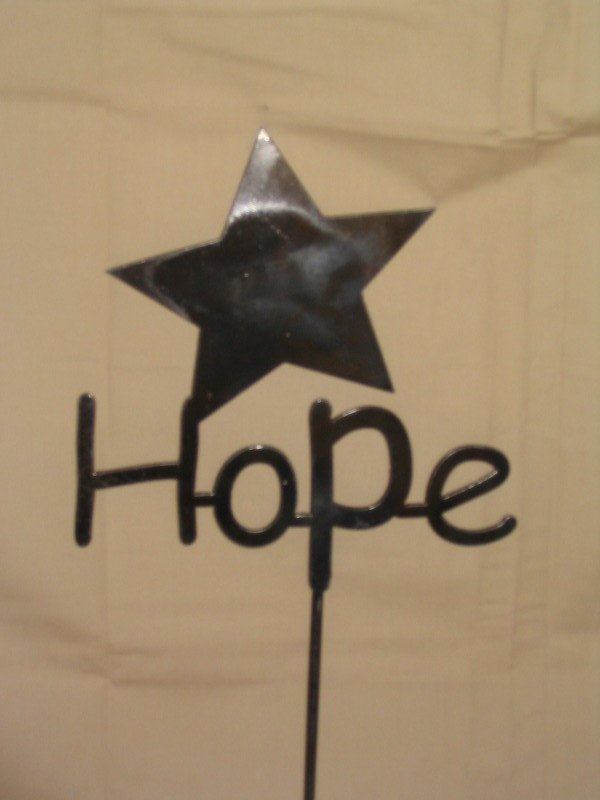 """Hope with a Star 9"""" x 10"""""""