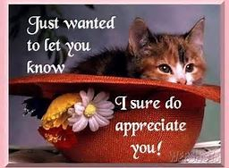 You are appreciated