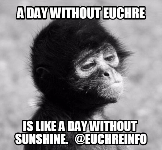 A day without Euchre is like a day without sunshine.