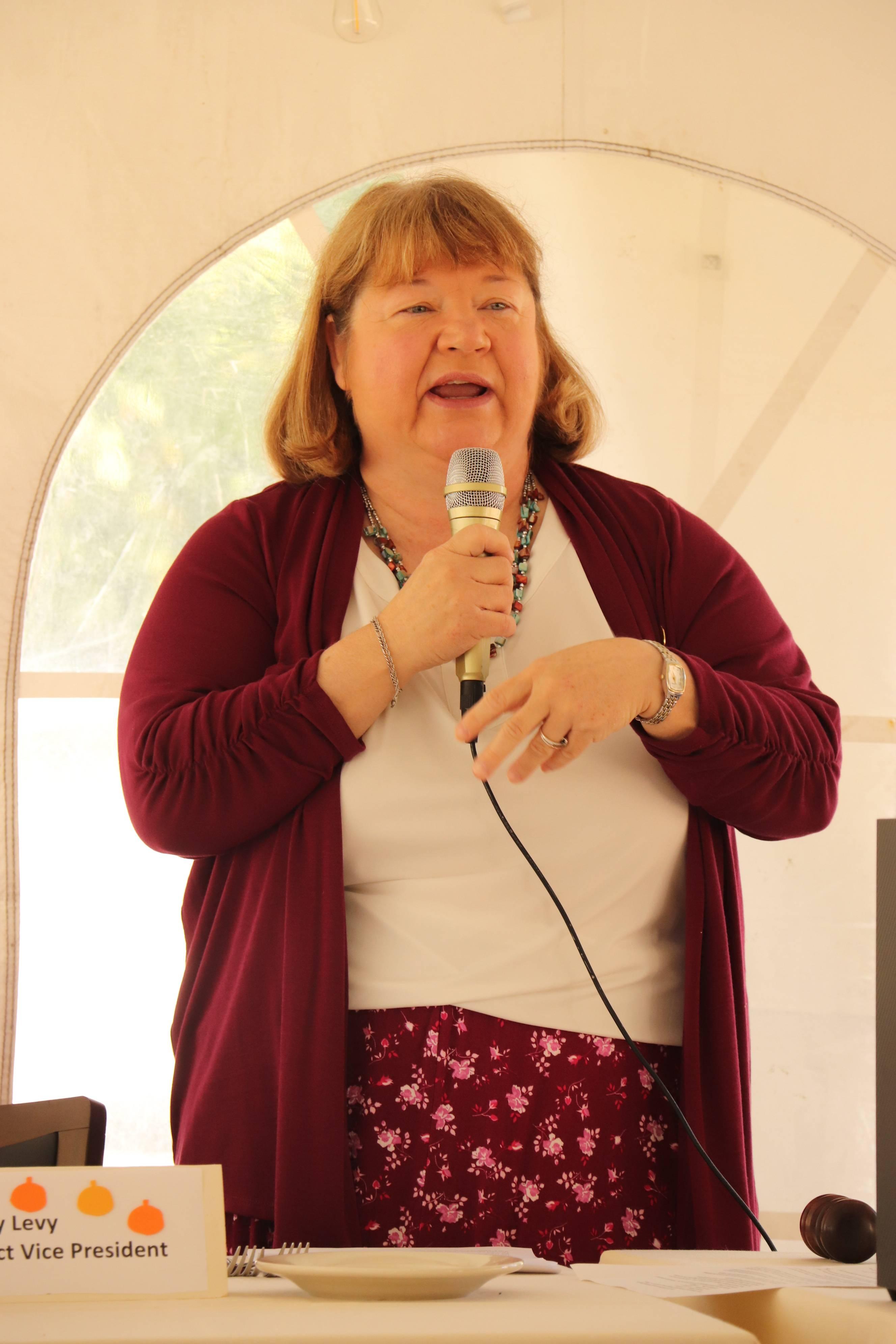 Nancy Levy
