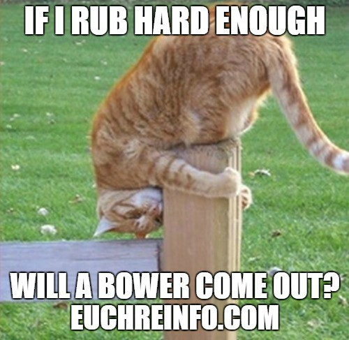 If I rub hard enough will a bower come out?