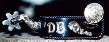 DB Show spur