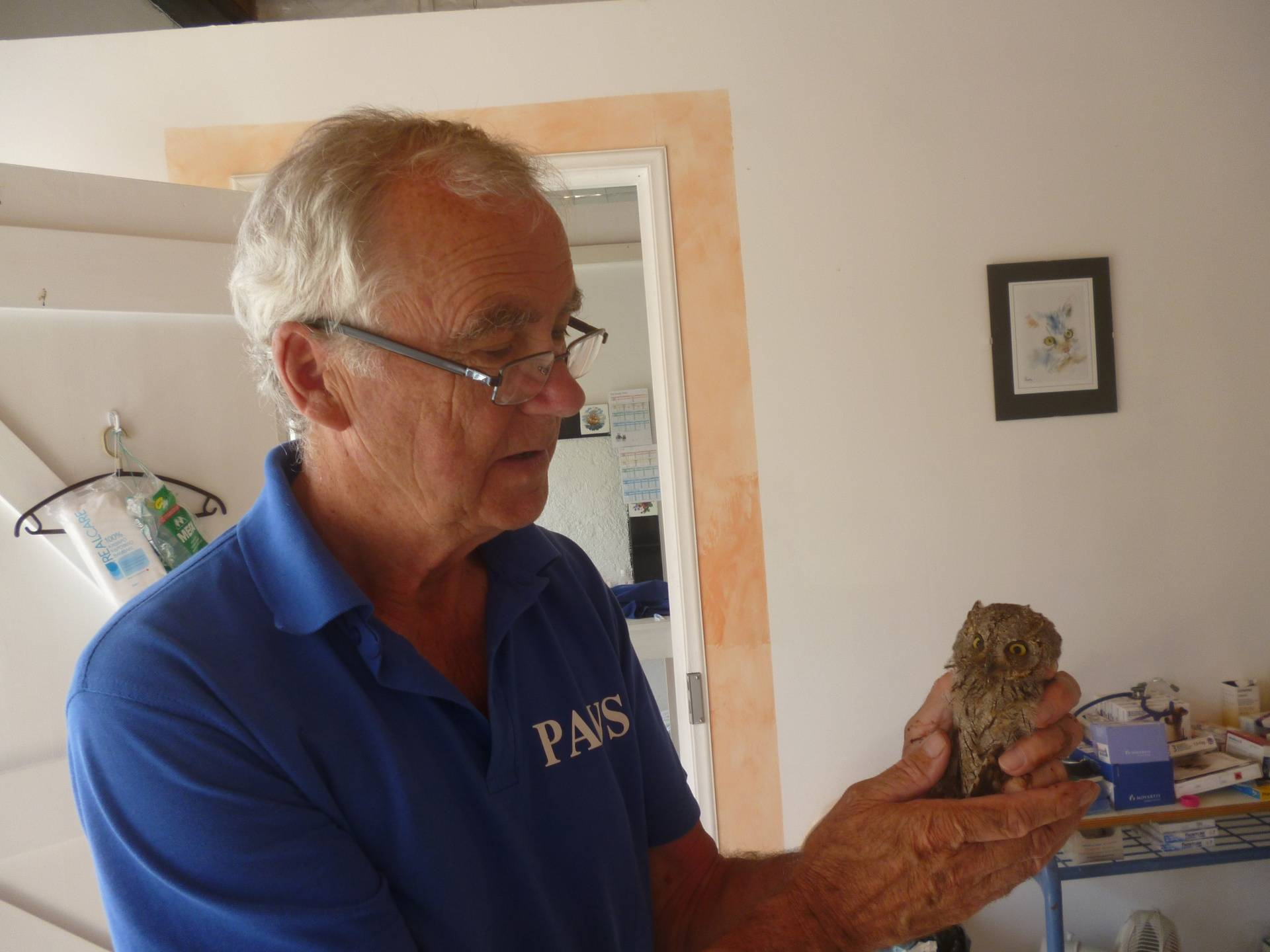 Russell and the owl