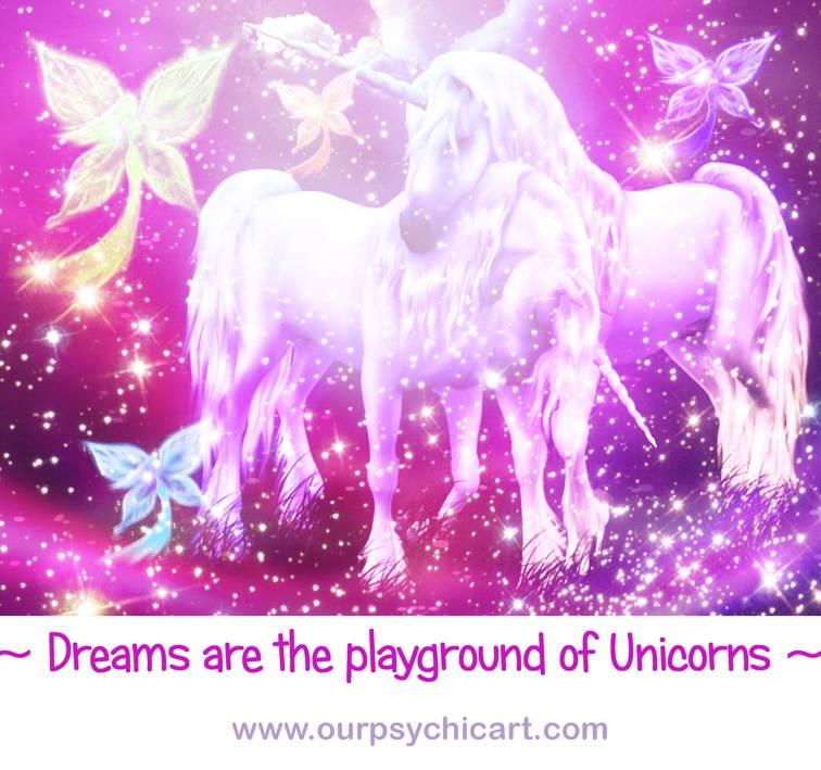 Dreams are the playground of unicorns