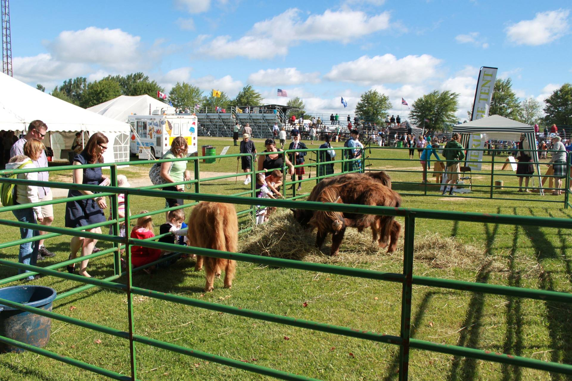 Fergus Highland Games