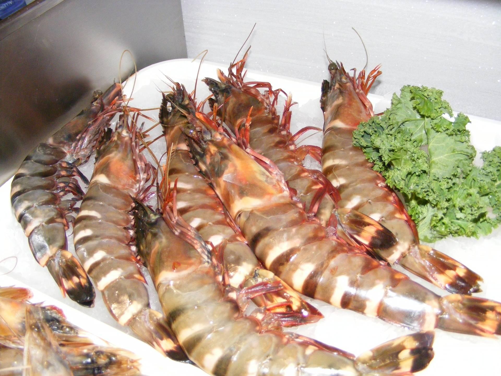 giant raw prawns
